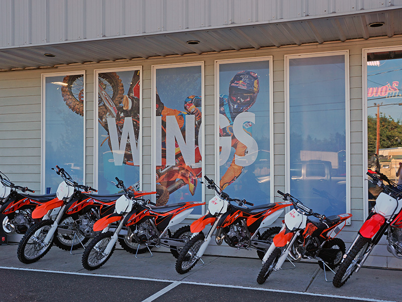 Redbull WINGS Campaign Window Perforated Print Film